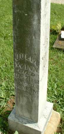 NOBLES WINN, JULIA - Meigs County, Ohio | JULIA NOBLES WINN - Ohio Gravestone Photos
