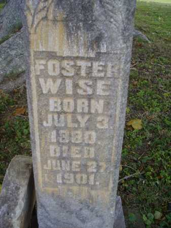 WISE, FOSTER - CLOSEVIEW - Meigs County, Ohio | FOSTER - CLOSEVIEW WISE - Ohio Gravestone Photos