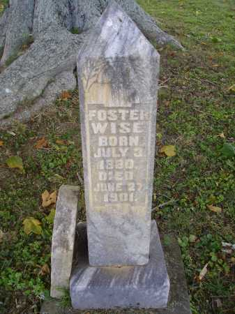 WISE, FOSTER - OVERALL VIEW - Meigs County, Ohio | FOSTER - OVERALL VIEW WISE - Ohio Gravestone Photos