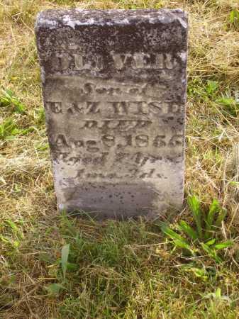 WISE, OLIVER - Meigs County, Ohio | OLIVER WISE - Ohio Gravestone Photos