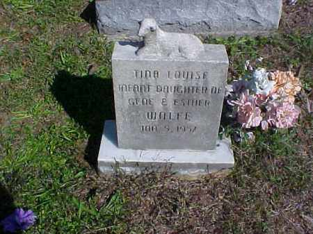 WOLFE, TINA LOUISE - Meigs County, Ohio | TINA LOUISE WOLFE - Ohio Gravestone Photos