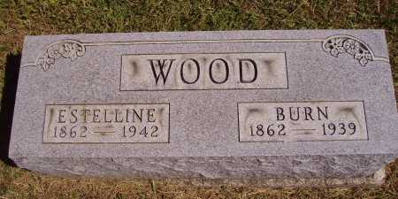 LITLE WOOD, ESTELLINE - Meigs County, Ohio | ESTELLINE LITLE WOOD - Ohio Gravestone Photos