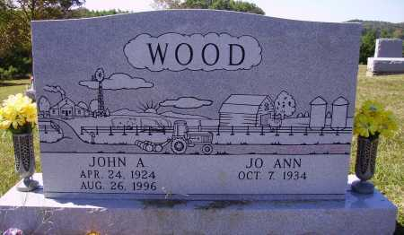 WOOD, JOHN ALFRED - Meigs County, Ohio | JOHN ALFRED WOOD - Ohio Gravestone Photos