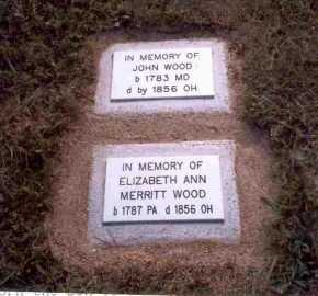 WOOD, ELIZABETH ANN - Meigs County, Ohio | ELIZABETH ANN WOOD - Ohio Gravestone Photos