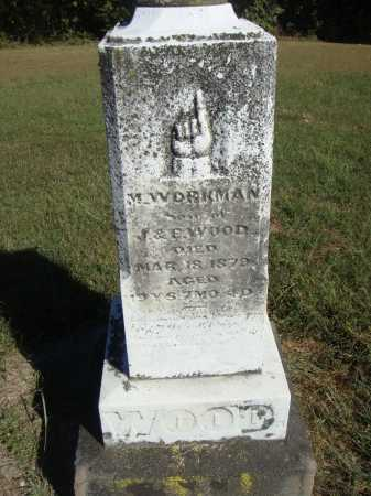WOOD, M. WORKMAN - OVERALL VIEW - Meigs County, Ohio | M. WORKMAN - OVERALL VIEW WOOD - Ohio Gravestone Photos
