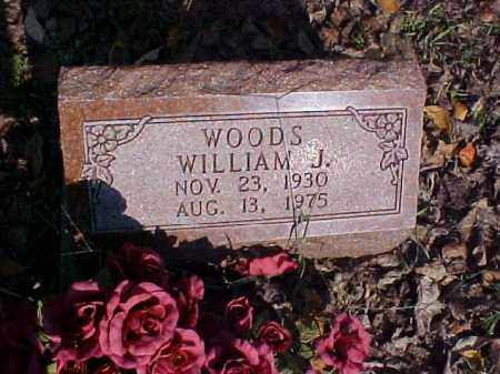 WOODS, WILLIAM J. - Meigs County, Ohio | WILLIAM J. WOODS - Ohio Gravestone Photos