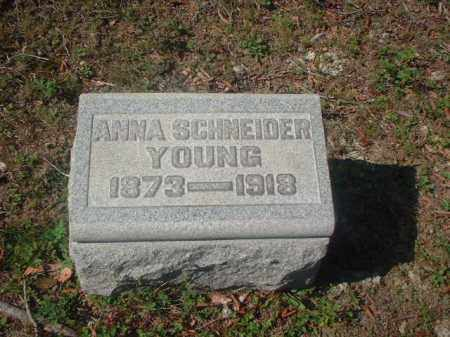 SCHNEIDER YOUNG, ANNA - Meigs County, Ohio | ANNA SCHNEIDER YOUNG - Ohio Gravestone Photos