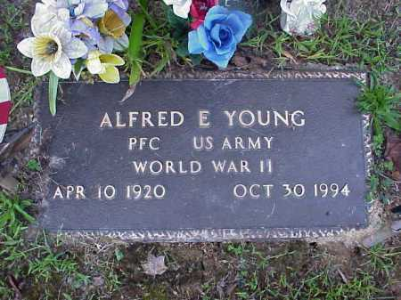 YOUNG, ALFRED E. - Meigs County, Ohio | ALFRED E. YOUNG - Ohio Gravestone Photos