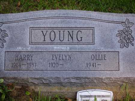 YOUNG, OLLIE - Meigs County, Ohio | OLLIE YOUNG - Ohio Gravestone Photos