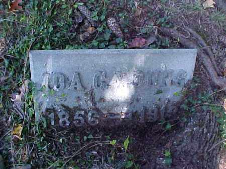YOUNG, IDA C. - Meigs County, Ohio | IDA C. YOUNG - Ohio Gravestone Photos