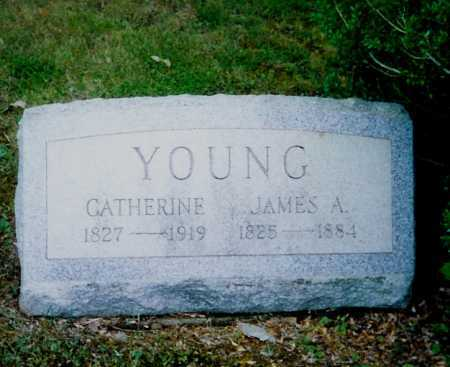 YOUNG, JAMES A. - Meigs County, Ohio | JAMES A. YOUNG - Ohio Gravestone Photos