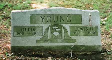 YOUNG, LEWIS H. - Meigs County, Ohio | LEWIS H. YOUNG - Ohio Gravestone Photos