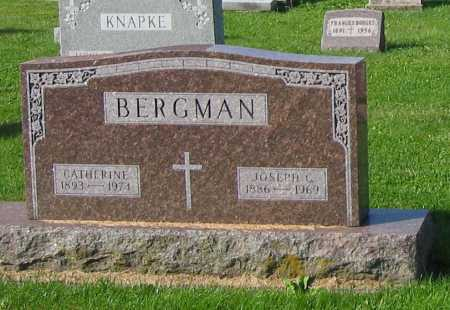 BERGMAN, CATHERINE - Mercer County, Ohio | CATHERINE BERGMAN - Ohio Gravestone Photos