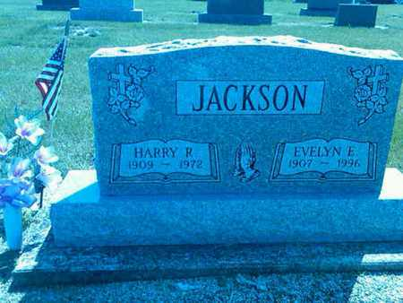 JACKSON, EVELYN - Mercer County, Ohio | EVELYN JACKSON - Ohio Gravestone Photos