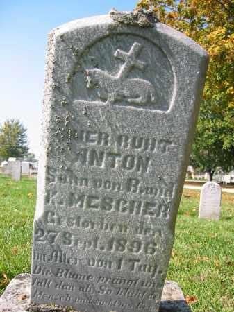 MESCHER, ANTON - Mercer County, Ohio | ANTON MESCHER - Ohio Gravestone Photos