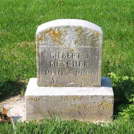 MESCHER, GILBERT J - Mercer County, Ohio | GILBERT J MESCHER - Ohio Gravestone Photos