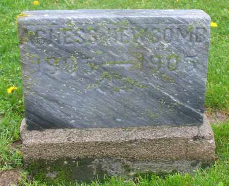 NEWCOMB, AGNES - Mercer County, Ohio | AGNES NEWCOMB - Ohio Gravestone Photos
