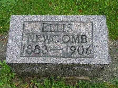 NEWCOMB, ELLIS - Mercer County, Ohio | ELLIS NEWCOMB - Ohio Gravestone Photos