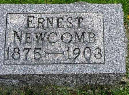 NEWCOMB, ERNEST - Mercer County, Ohio | ERNEST NEWCOMB - Ohio Gravestone Photos