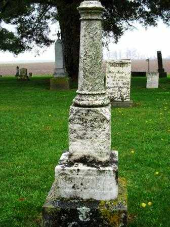 NEWCOMB, LUTHER - Mercer County, Ohio | LUTHER NEWCOMB - Ohio Gravestone Photos