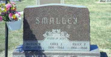 SMITH SMALLEY, ALICE FRANCIS - Mercer County, Ohio | ALICE FRANCIS SMITH SMALLEY - Ohio Gravestone Photos