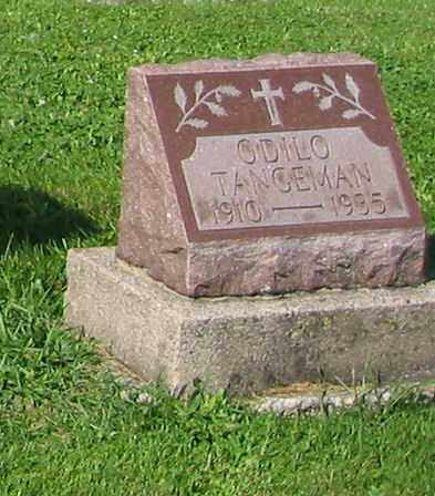 TANGEMAN, ODILO - Mercer County, Ohio | ODILO TANGEMAN - Ohio Gravestone Photos