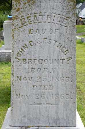 BRECOUNT, BEATRICE - Miami County, Ohio | BEATRICE BRECOUNT - Ohio Gravestone Photos
