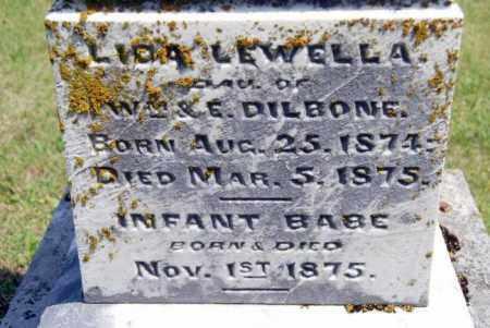 DILBONE, LIDA LEWELLA - Miami County, Ohio | LIDA LEWELLA DILBONE - Ohio Gravestone Photos