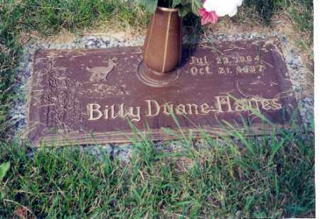 HAYES, BILLY DIANE - Miami County, Ohio | BILLY DIANE HAYES - Ohio Gravestone Photos