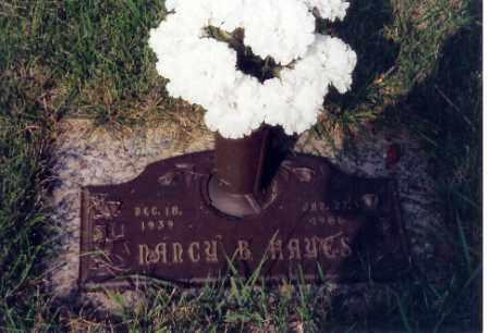 HAYES, NANCY B. - Miami County, Ohio | NANCY B. HAYES - Ohio Gravestone Photos