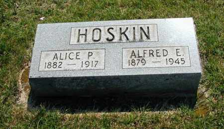 KINGHAM HOSKIN, ALICE - Miami County, Ohio | ALICE KINGHAM HOSKIN - Ohio Gravestone Photos