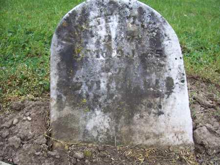 JAY, WALTER DENNY JAY - Miami County, Ohio | WALTER DENNY JAY JAY - Ohio Gravestone Photos