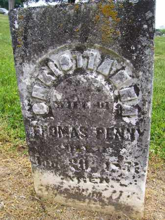 HUNT PENNY, CHRISTIANNA - Miami County, Ohio | CHRISTIANNA HUNT PENNY - Ohio Gravestone Photos