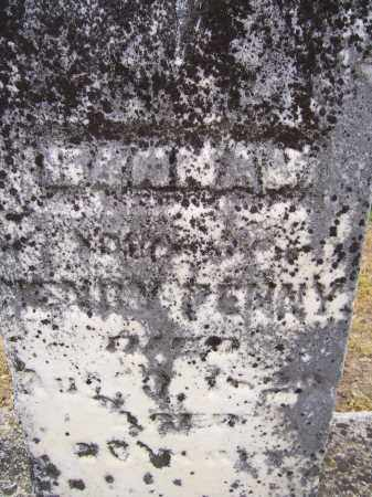 BROWN PENNY, HANNAH - Miami County, Ohio | HANNAH BROWN PENNY - Ohio Gravestone Photos