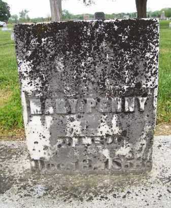 PENNY, MARY - Miami County, Ohio   MARY PENNY - Ohio Gravestone Photos
