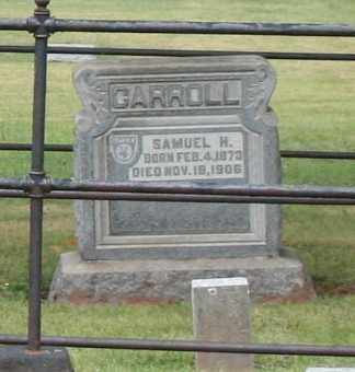 H CARROLL, SAMUEL - Monroe County, Ohio | SAMUEL H CARROLL - Ohio Gravestone Photos
