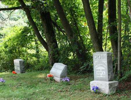 CRONIN, ALEXANDER - Monroe County, Ohio | ALEXANDER CRONIN - Ohio Gravestone Photos