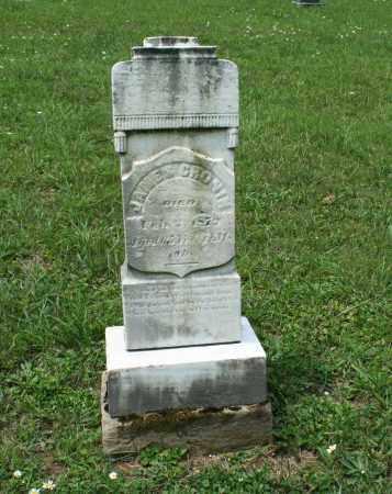 CRONIN, JAMES - Monroe County, Ohio | JAMES CRONIN - Ohio Gravestone Photos