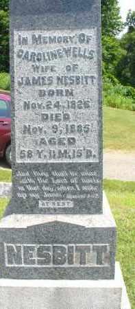 WELLS NESBITT, CAROLINE - Monroe County, Ohio | CAROLINE WELLS NESBITT - Ohio Gravestone Photos
