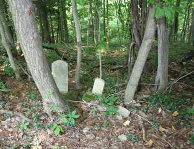 OVERVIEW, BARBER'S RIDGE - Monroe County, Ohio | BARBER'S RIDGE OVERVIEW - Ohio Gravestone Photos