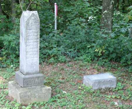 SLOAN, CHARLOTTE A. - Monroe County, Ohio | CHARLOTTE A. SLOAN - Ohio Gravestone Photos