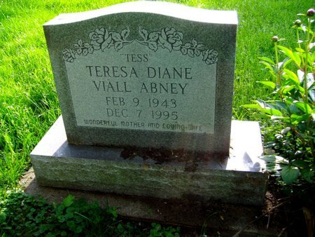 ABNEY, TERESA DIANE - Montgomery County, Ohio | TERESA DIANE ABNEY - Ohio Gravestone Photos