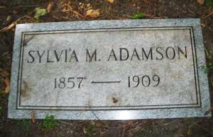 ADAMSON, SYLVIA M. - Montgomery County, Ohio | SYLVIA M. ADAMSON - Ohio Gravestone Photos