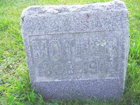 FOX ALLISON, CHRISTINA - Montgomery County, Ohio | CHRISTINA FOX ALLISON - Ohio Gravestone Photos