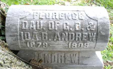 ANDREW, FLORENCE - Montgomery County, Ohio | FLORENCE ANDREW - Ohio Gravestone Photos