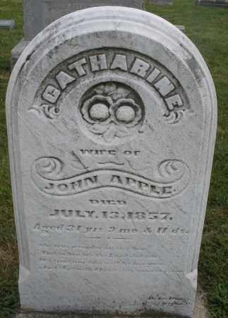 APPLE, CATHARINE - Montgomery County, Ohio | CATHARINE APPLE - Ohio Gravestone Photos