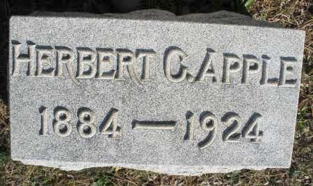 APPLE, HERBERT - Montgomery County, Ohio | HERBERT APPLE - Ohio Gravestone Photos