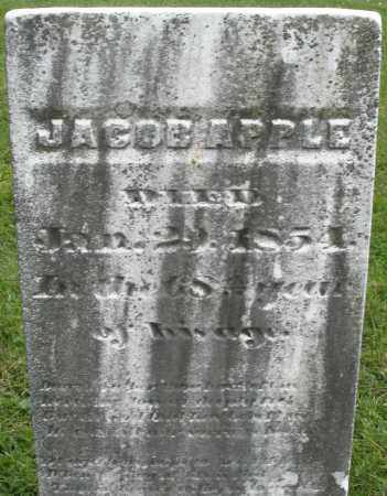 APPLE, JACOB - Montgomery County, Ohio | JACOB APPLE - Ohio Gravestone Photos