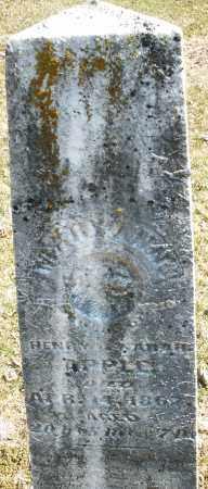 APPLE, MARY ANN - Montgomery County, Ohio | MARY ANN APPLE - Ohio Gravestone Photos