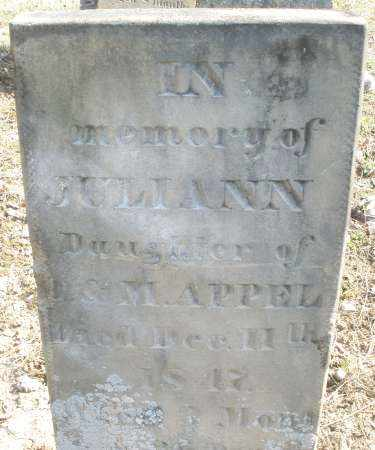 APPLE (SIC), JULIANN - Montgomery County, Ohio | JULIANN APPLE (SIC) - Ohio Gravestone Photos